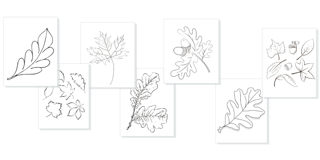 free blank coloring pages